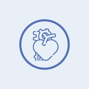 Aorta Icon