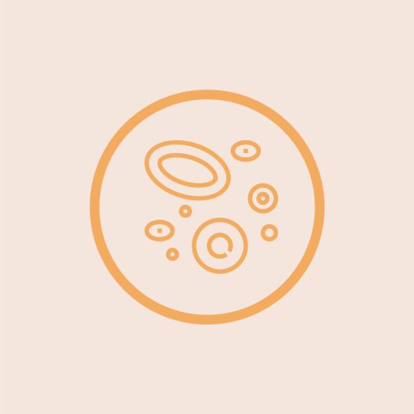 Arteries Icon
