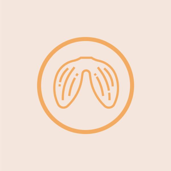 Heart Valve Icon